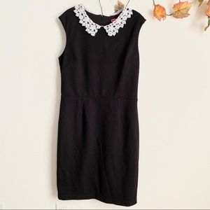 Betsey Johnson Black dress with collar